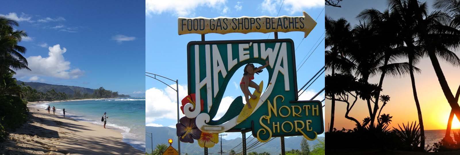 Hawaii Surf Camps - Endless Summer Surf Camp